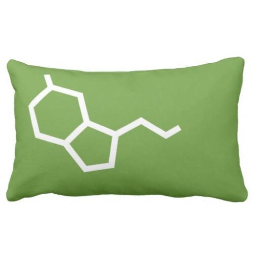serotonina_dopamina_amor_y_felicidad_almohadas-r1ba2903b1bcf431691fe869bdde73e11_2i4t2_8byvr_512
